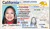 California Divers License Example